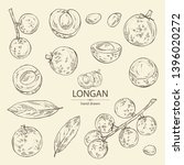 collection of longan  fruit and ... | Shutterstock .eps vector #1396020272