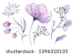 Watercolor Transparent floral set isolated on white collection of roses, bellflower, buds, leaves, branches bundle in pastel pink, grey, violet, purple, botanical illustration wedding design