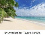 White Sandy Beach With Palm...