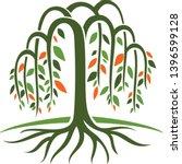 Illustration Of Willow Tree...