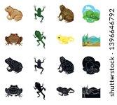 vector design  wildlife and bog ... | Shutterstock .eps vector #1396646792