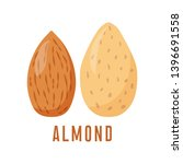 almonds nuts. vector... | Shutterstock .eps vector #1396691558