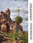 balanced rock trail in big bend ... | Shutterstock . vector #1396909502