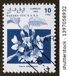 Sahara Occ R.a.s.d Stamp Circa...