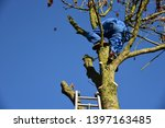 hauts de france france november ... | Shutterstock . vector #1397163485