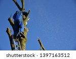 hauts de france france november ... | Shutterstock . vector #1397163512