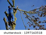 hauts de france france november ... | Shutterstock . vector #1397163518