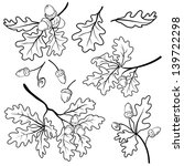 set oak branches with leaves...   Shutterstock .eps vector #139722298