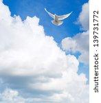 white dove flying in the sky | Shutterstock . vector #139731772