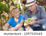 winemakers father and son in... | Shutterstock . vector #1397510165