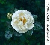digital illustration of the... | Shutterstock . vector #1397570642