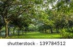 green trees in park   Shutterstock . vector #139784512
