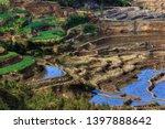 honghe yuanyang  samaba rice... | Shutterstock . vector #1397888642