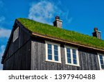 House With Grass Roof In...