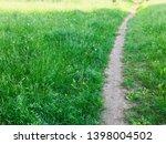 road in forest park  green...   Shutterstock . vector #1398004502