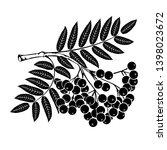 rowan branch on a white... | Shutterstock . vector #1398023672