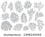 vector set of corals. outline... | Shutterstock .eps vector #1398145445