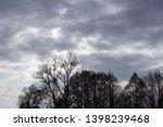 black trees and overcast sky | Shutterstock . vector #1398239468