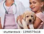 Stock photo little smiling girl holding her puppy dog at the veterinary doctor office closeup shallow depth 1398575618