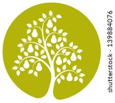 pear tree care services limited
