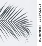 shadow of palm leaves on a... | Shutterstock . vector #1398932825