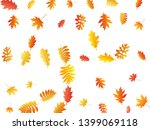 oak  maple  wild ash rowan... | Shutterstock .eps vector #1399069118