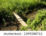Wood Bridge Ditch In The Garden
