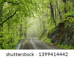 a trail through the spring... | Shutterstock . vector #1399414442