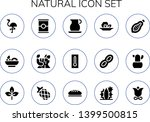 natural icon set. 15 filled... | Shutterstock .eps vector #1399500815