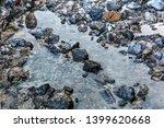 stony sea shore  close up.... | Shutterstock . vector #1399620668