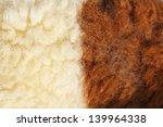 fleece sheep background | Shutterstock . vector #139964338