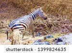 crossing kenya. national park.... | Shutterstock . vector #1399824635