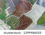 deciduous cypress forest in... | Shutterstock . vector #1399986035