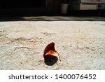 a deciduous leaf taken on a... | Shutterstock . vector #1400076452
