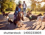 Stock photo smiling professional woman dog walker on the street with dogs 1400233805