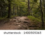 Mountain Trail Inside The...