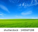 Field Of Green Grass With Whit...