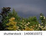 overcast sky before rain is... | Shutterstock . vector #1400810372