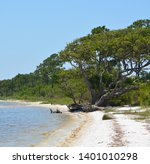 the coast of gulf breeze in... | Shutterstock . vector #1401010298
