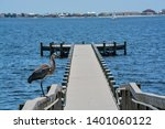 a great blue heron standing on... | Shutterstock . vector #1401060122