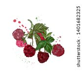 raspberries vector drawing.... | Shutterstock .eps vector #1401682325