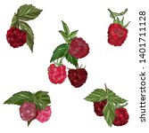 raspberries  vector drawing.... | Shutterstock .eps vector #1401711128