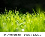background with green grass ... | Shutterstock . vector #1401712232