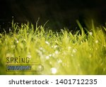 background with green grass ... | Shutterstock . vector #1401712235