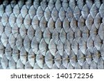 real roach fish scales... | Shutterstock . vector #140172256