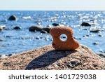 Beautiful Stone With A Hole...