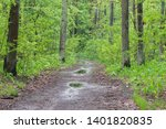 puddles in spring deciduous... | Shutterstock . vector #1401820835