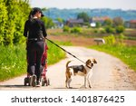 Stock photo woman walking with stroller and dog outdoors in nature on a rural road sunny day in countryside 1401876425