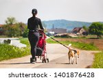 Stock photo woman walking with stroller and dog outdoors in nature on a rural road sunny day in countryside 1401876428