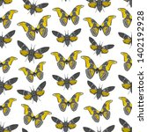 seamless pattern with butterfly ...   Shutterstock .eps vector #1402192928